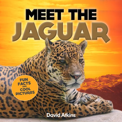 Meet The Jaguar: Fun Facts & Cool Pictures (Meet The Cats) (English Edition)