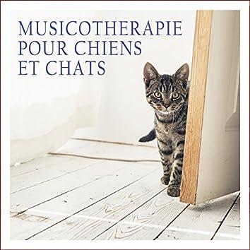 Musicothérapie pour chiens et chats