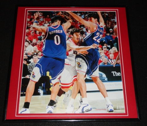 Luke Walton 2001 Arizona Wildcats Framed 12x12 Poster Photo