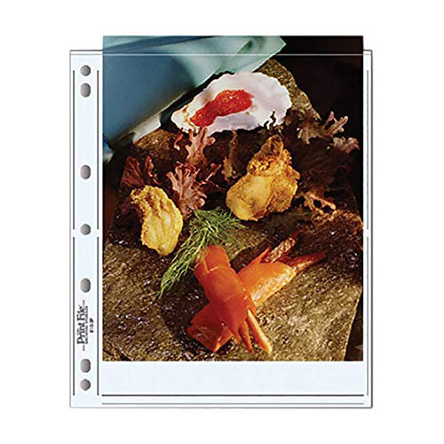 Top 10 archival photo sleeves 8 x 10 for 2021