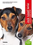 Jack russell terrier y parson russell terrier