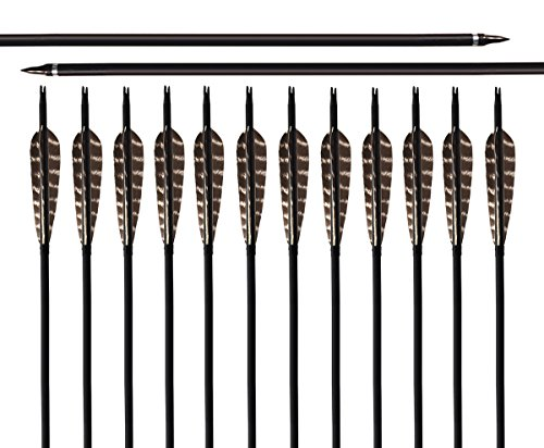 ARCHERY SHARLY 31Inch Carbon Targeting Practice Arrows...