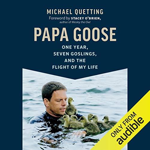 Page de couverture de Papa Goose