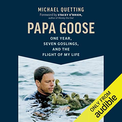 Papa Goose audiobook cover art
