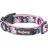 Blueberry Pet 6 Patterns Soft & Comfy Welcoming Spring Rose Flower Prints Girly Padded Dog Collar, Medium, Neck 14.5'-20', Adjustable Collars for Dogs