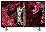 JVC LT-43VF53A 109 cm (43 Zoll) Fernseher (Full HD, Triple Tuner, DVB-T2 H.265/HEVC, Smart TV, Netflix)