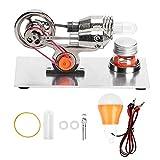 Motor Stirling de Aire Caliente, Astilla Generador de Electricidad Astilla en Miniatura Motor Stirling Generador de energía eléctrica Modelo de Motor Stirling Física Vapor
