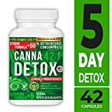 Best Detox For Drugs - Nutrameds Canna Detox | Strongest, Fastest Acting Total Review