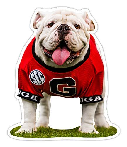 "Wright Photo UGA Georgia Bulldogs: Die Cut Sticker - UGA X Football Mascot - Premium Decal for Laptop, Car & Truck, Water Bottle, Barware (Medium: 4.25"", White Vinyl: 2-Pack)"