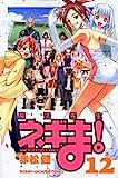 魔法先生ネギま!(12) (講談社コミックス)
