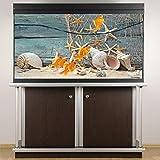 Meiyya Decoration Aquarium, Aquarium Fish Tank Poster Decoración de Acuario Seashell Starfish Poster 3D PVC Adhesivo Fish Tank Telón para Decoración de Acuarios y Acuarios Domésticos(61 * 41cm)