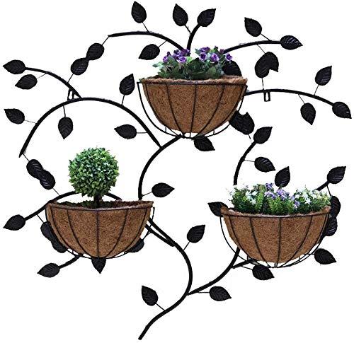 Estante de flores Estante de palma de coco de hierro forjado creativo, Estante para plantas montado en la pared, Marco de decoración de la pared interior del balcón de la maceta (3 cestas),Negro