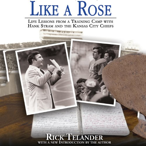 Like a Rose audiobook cover art