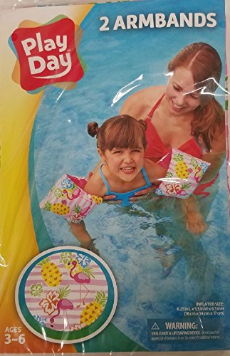 Play Day Ages 3-6 brazalete de Water Wings Flamingo Pineapple