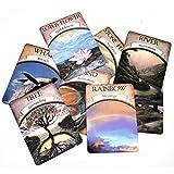 SYEA Mazzo di 48 Carte dei Tarocchi Mazzi di Tarocchi Facili da Trasportare Tarocchi di Divinazione Cartas Carte di Astrologia