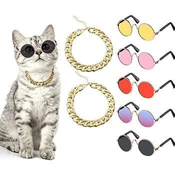 Best cat glasses Reviews