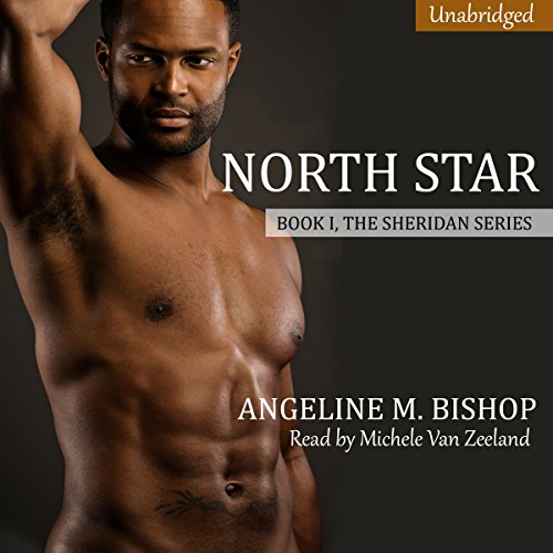 North Star audiobook cover art