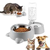 Doppia ciotola per animali domestici,2 in 1 Ciotola Per Gatti Ciotola per Gatti Doppia con Supporto Rialzato,Distributori Automatici di Cibo & Acqua,per Gatti e Cani (A)
