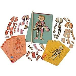 APRENDE CON DIVERSIÓN: ¡Deja que los niños descubran el cuerpo humano con este divertido juego educativo! Compuesto por 76 imanes y un soporte magnético, permite el aprendizaje recomponiendo las diferentes partes del cuerpo humano. Un palo de madera ...