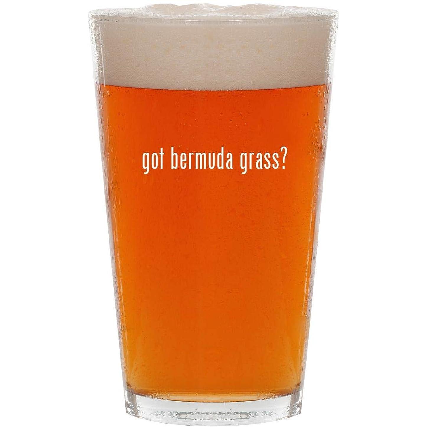 got bermuda grass? - 16oz All Purpose Pint Beer Glass