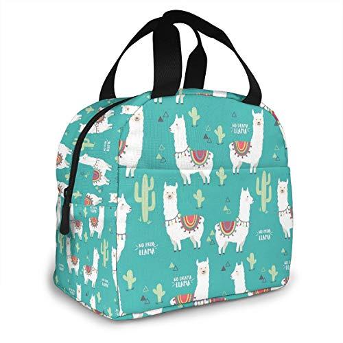 Bolsa térmica para el almuerzo para mujeres, hombres, niños, reutilizable, con bolsillo frontal, bolsa para el almuerzo, para viajar, picnic, trabajo, escuela