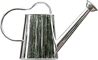 LULUD Indoor Plant Long Spout Watering Can, Gardening Stainless Steel Watering Can, 2.5L, 4.5L (Size : 2.5l)
