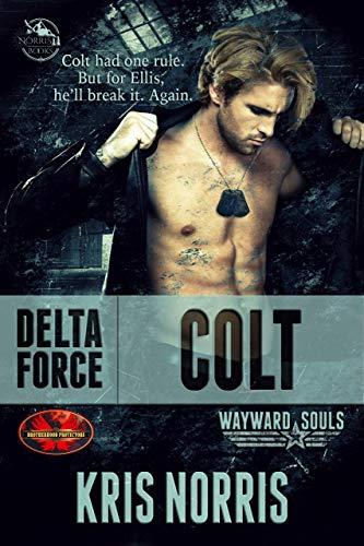 Delta Force: Colt: Brotherhood Protectors World/Wayward Souls Crossover (English Edition)