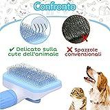 Zoom IMG-2 spazzola per cani gatto accessori