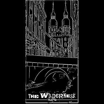 The Wilderness II