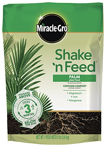 Scotts Miracle-Gro 3003010 Shake n 'Feed continue Release Palm Plante Nourriture