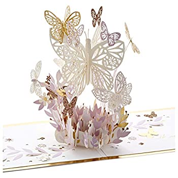 Hallmark Signature Paper Wonder Pop Up Card Thankful for You  Thinking of You Card or Birthday Card