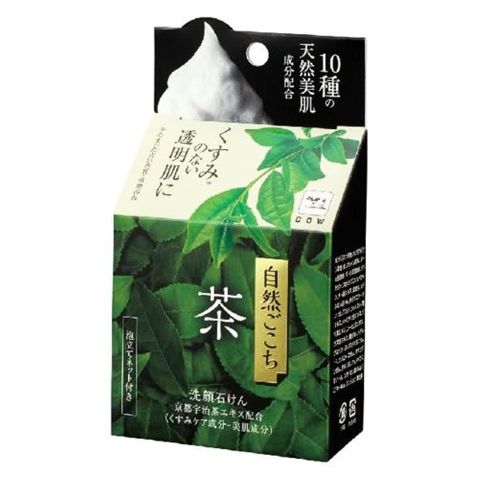 魅力的であることへのアピールパスポートつば牛乳石鹸共進社 自然ごこち 茶 洗顔石けん 80g (お茶エキス配合洗顔せっけん) ×48点セット (4901525002288)