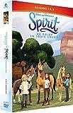 Spirit, au Galop en Toute liberté-Saisons 1 à 4