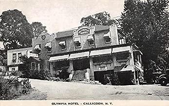 olympia hotel callicoon ny