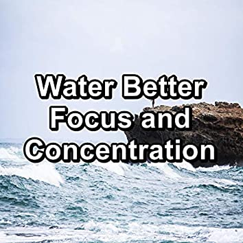 Water Better Focus and Concentration