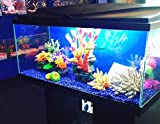 Ciano BLACK Aqua 80 LED Tropical Glass Aquarium - Includes Filter, Lights & Heater 71L