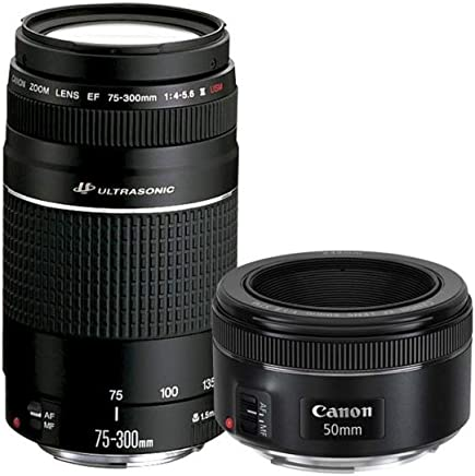 Canon Kit 2 Lentes 75-300MM III 50MM 1.8 6473A031AA