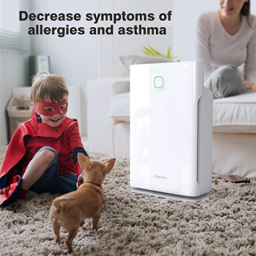 Finether Home Air Purifier Large HEPA Filter with Timers│3 Fan Speeds│3 Modes (Sleep/Turbo/Auto)│Child Lock Filter│Replace Indicator│for Large Room Home Office Kithchen Allergies Pets Smokers