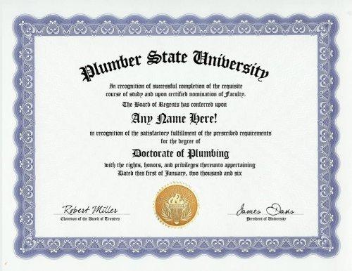 Plumber Plumbing Degree: Custom Gag Diploma Doctorate Certificate (Funny Customized Joke Gift - Novelty Item)