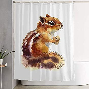 Avnaalvl Fabric Bathroom Curtain Sets Mammals Watercolor Chipmunk Drawn Color Eating Nuts Wild Animal Painting Animals Wildlife Textures Shower Curtain Bath Curtains with Hooks 60  W x 72  H