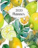 2020 Planner: Lemon Daily, Weekly & Monthly Calendars | January through December | #8