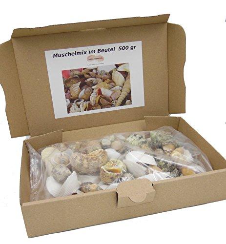 Muschelmix ca. 500g - Deko Muscheln -Deko Schnecken -  maritime Dekoration