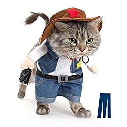 cowboy costume for your cat