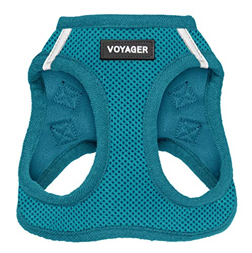 "Voyager Step-in Air Dog Harness - All Weather Mesh, Step in Vest Harness for Small and Medium Dogs by Best Pet Supplies, Turquoise (Matching Trim), M (Chest: 16-18"") (207-TQW-M)"
