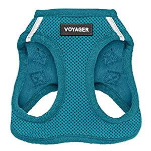Best Pet Supplies Voyager Step-in Air Dog Harness – All Weather Mesh, Step in Vest Harness for Small and Medium Dogs Turquoise (Matching Trim), S (Chest: 14.5-17″) (207T-TQW-S)