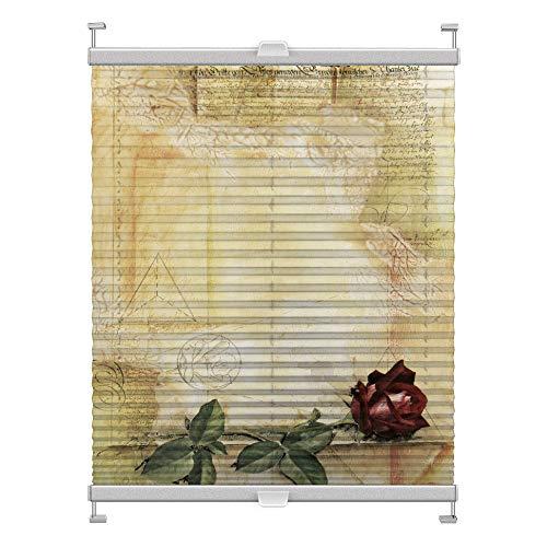 Plissee mit Motiv 8000 nach Maß Schrauben in Glasleisten Klemmen auf Fensterrahmen Digitaldruck Sichtschutz lichtdurchlässig fest verspanntes Jalousie Rollo Fenster innen Breite 25-50 Höhe 25-100 cm