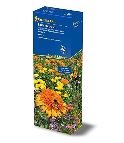 Profiline 4000159049352 Kiepenkerl Mélange de semences de Fleurs pour Tapis de Fleurs