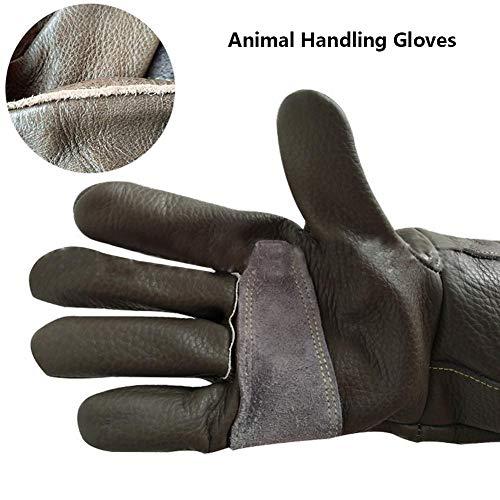 Kitabetty Pet Handling Handschuhe, Anti-Haustier Tier, Hund, Katze, Schlange, Biss, Rettungsstation, Schützende Lange Dicke Lederhandschuhe, Für Katzen Und Gartenarbeit
