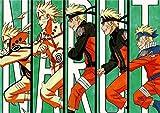 Puzzle 1000 piezas Regalo de imagen de anime de Naruto puzzle 1000 piezas adultos Juego de habilidad para toda la familia, colorido juego de ubicación. Rompecabezas de juguete50x75cm(20x30inch)