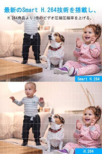 PECHAM『ネットワークカメラ』